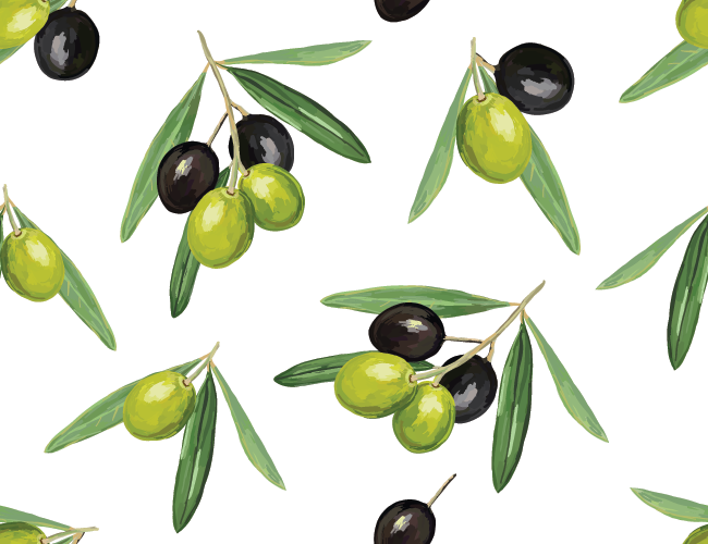 The olive – antimicrobial compounds