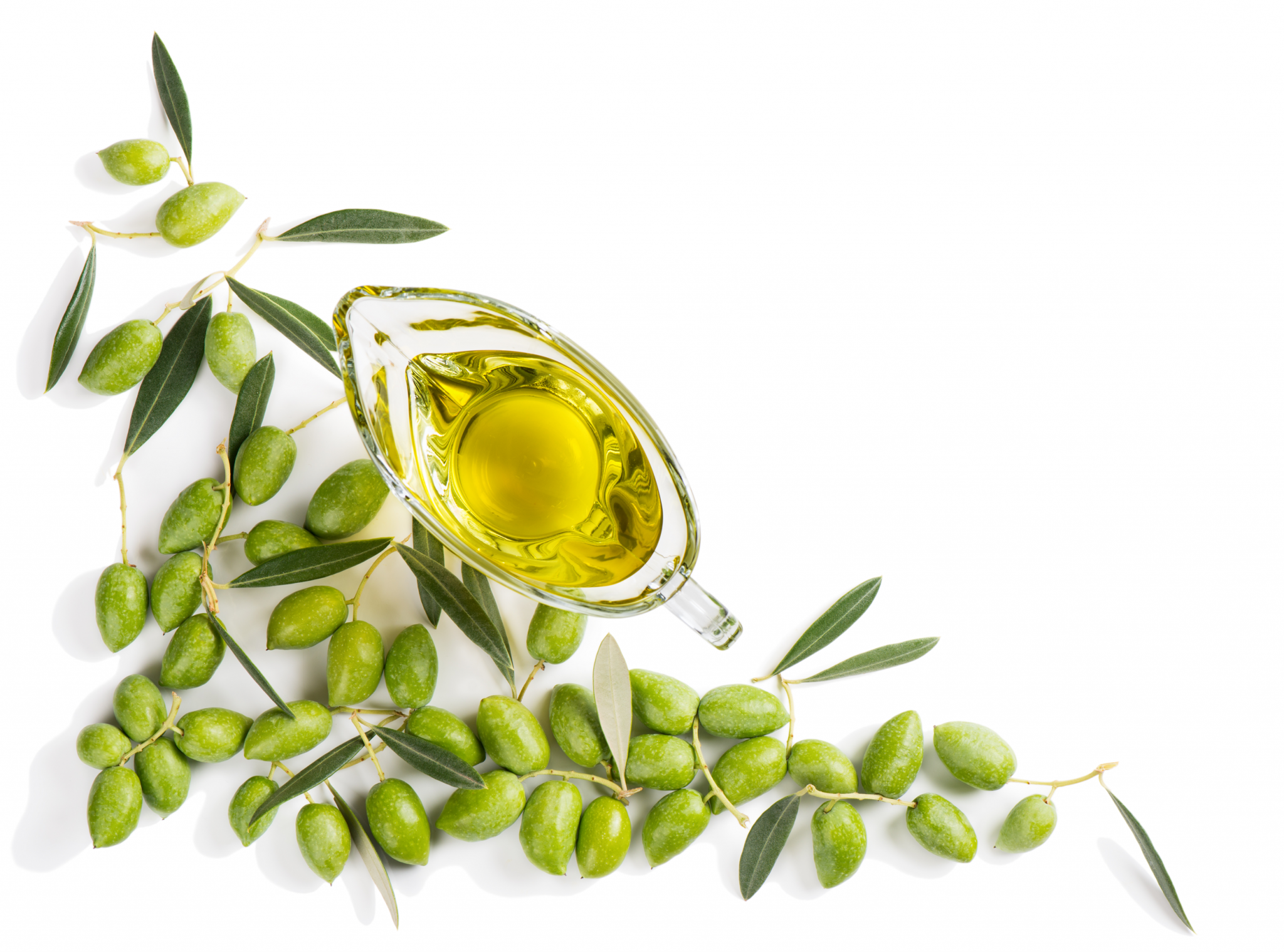 Sensory Analysis in Olive Oil – Negative Attributes