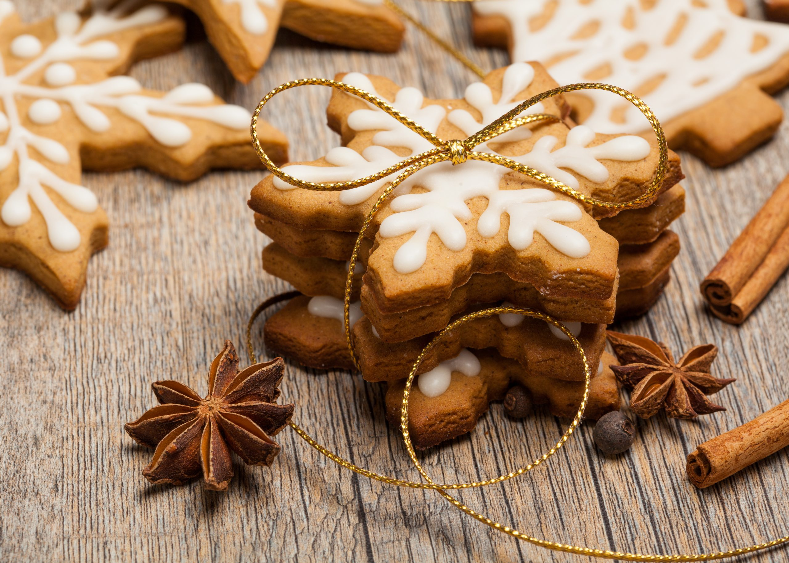 Gingerbread Cookie made with Extra Virgin Olive Oil